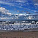 Ocean Waves by Susanne Van Hulst