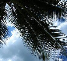 At Condado-Under the Palm by Swan Diaz