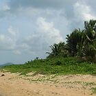 Farside Luquillo-Further Out by Swan Diaz