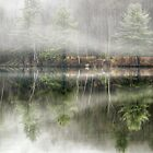 Foggy Reflections by Claudia Kuhn