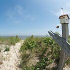 Beach Path by emjaynie