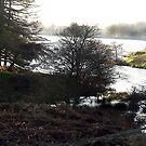 Cod Beck Lake by Trevor Kersley