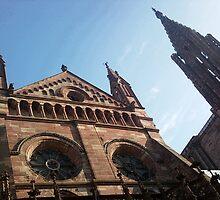 Strasbourg Cathedral de Notre-Dame  by DavidROMAN