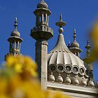 Royal Pavilion through Yellow Flowers by Steve Churchill