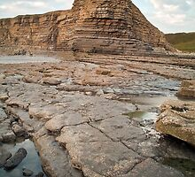 Nash Point by Steve  Liptrot