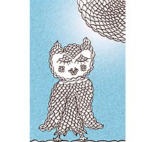 Olive Owl caught by Day Photographic Print