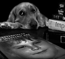 The Book Worm by Brandie1