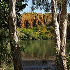 Through the trees to the Ord River by georgieboy98