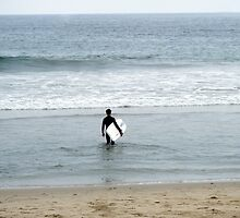 Surf by David123