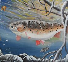 fat brown trout by james dunnachie