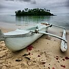 Beached Canoe by Adam Jones