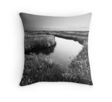 Mirror Mirror on the Marsh BW Throw Pillow