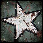 Sign Star by Robert Baker