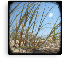 Grassy Dunes - TTV #3 Canvas Print