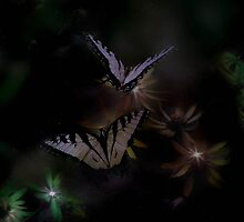 Flying in the enchanted garden at midnight by Judi Taylor