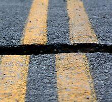Earthquake New Zealand   3 by Kathy Reid