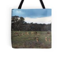 They were llooking back to see if I was looking back to see if they were looking back at me. Tote Bag