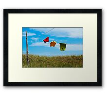 Dancing In The Wind Framed Print
