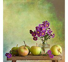 Minis Photographic Print