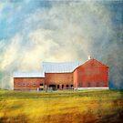 Old Red Barn by dawne polis