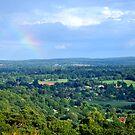 Rainbow Dreams by Lisa Williams
