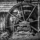 Mabry's Water Wheel by Christine Annas