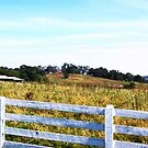 Hilltop by jpryce