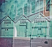 Frank Cadd Co by Aeve Pomeroy