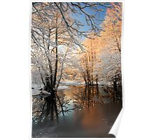 River landscape with hoarfrost trees Poster