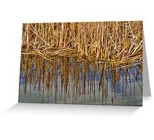 Reeds Of Christie Greeting Card