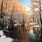 Winter river sunrise light by Romeo Koitme