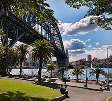 Sydney Harbour Foreshore by Chris  Randall
