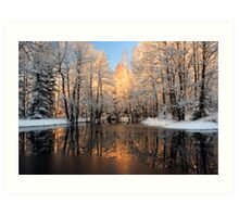 Reflection trees with sunlight Art Print