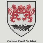 Fortuna Favet Fortibus ( Clan O&#x27;Flaherty ) by Gregory John O&#x27;Flaherty