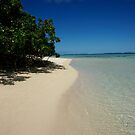 Rarotongan Beach by Adam Jones