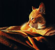 By the Light of the Fire by Karen  Hull