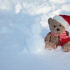 Bear making a Snowman by Albert1000