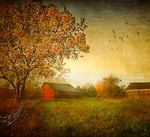 New England Seasons by Michael  Petrizzo