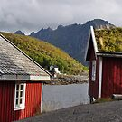 Red homes by Annbjørg  Næss