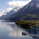Waterton Lake Cruise by Jann Ashworth