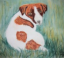 Jack Russell Puppy  by GEORGE SANDERSON