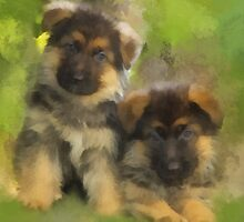 Playful Pups by rok-e