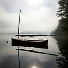 Misty dawn by Ian Middleton
