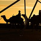 Camels @ Glenelg by SUMIT TANDON