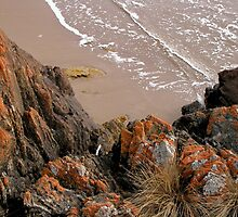The Edge of the World, Arthur River, Tasmania, Australia. by kaysharp