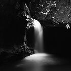 Liquid Light by Tatiana R