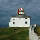Old Cape Spear Lighthouse by DebYoung