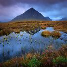 Autumn moves into Rannoch Moor... by David Mould