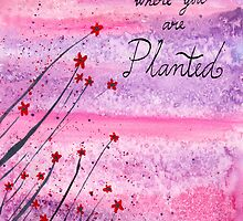 Bloom where you are planted by klbailey