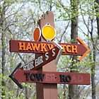 hawkwatch sign by William Brennan